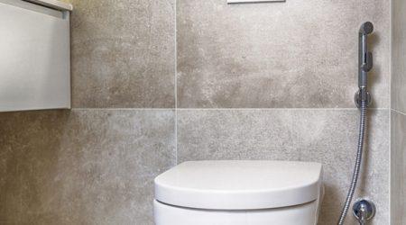 Seinä-WC Gustavsberg Hygienic Flush