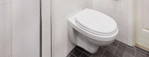 Seinä WC